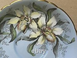 1940s Paragon Cup & Saucer Blue Lady Slipper