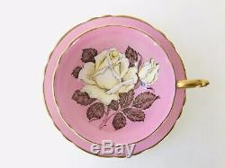 1940s Pink Paragon Huge White Cabbage Rose teacup A277 Beautiful
