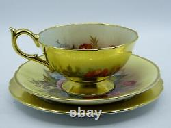 Antique Aynsley Trio comprising a tea cup with saucer and cake plate in the Gold