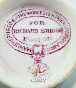 Antique Worcester Tea Cup & Saucer, Butterflies, Jeweled