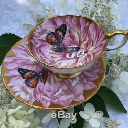 Anysley butterfly on chysanthemum tea cup and saucer