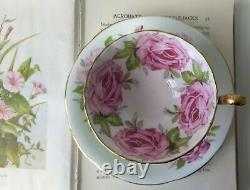 Aynsley Cabbage Rose Tea Cup & Saucer Duo Cabinet Set