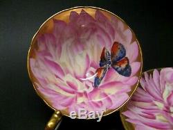 Aynsley Pink Tone Butterfly Chysanthemum Tea Cup & Saucer