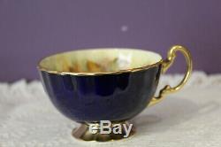 Beautiful Aynsley Cobalt Blue D. Jones Fruit Center Tea Cup And Saucer