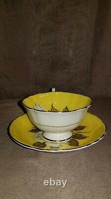 Gorgeous Scarce Paragon Yellow Floating Rose Teacup & Saucer. England
