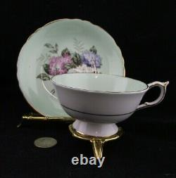 Paragon Double Warrant Hydrangeas Cabinet Tea Cup And Saucer A1427