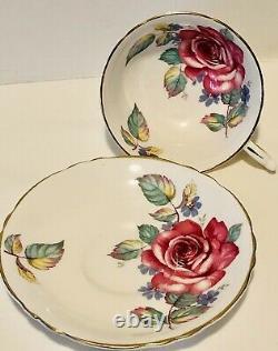 Paragon Floating Cabbage Rose Tea Cup & Saucer C. 1960-63