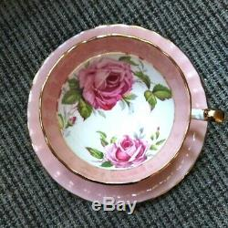 RARE Pink and White Aynsley Cabbage Rose Teacup & Saucer