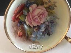Rare Aynsley J A Bailey Pink Rose Floral Gold Gilt Teacup & Saucer