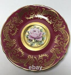 Rare Paragon Cup and Saucer Huge Cabbage Rose Floating in Gold A1793 Warrant