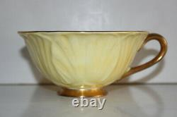 Shelley Light Yellow Daisy Chintz-Oleander Bone China Footed Teacup and Saucer