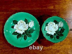 Stunning Paragon Bone China White Cabbage Rose On Green Tea Cup & Saucer