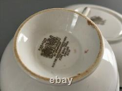 Stunning Rare Paragon Double Warrant Yellow / White Rose Teacup