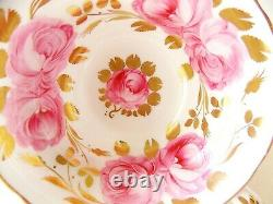 Swansea Rose Grosvenor Bone China England Cup And Saucer Gilt Pink Roses
