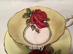 Vintage Paragon England Red Rose Signed R. Johnson #a1442